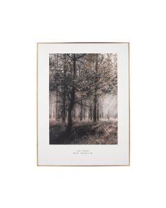 Mono Forest Trail Print with Gold Detail and Black Frame