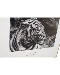 Mono Tiger Print with Gold Detail and Black Frame