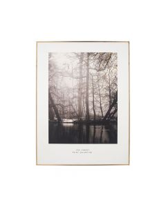 Mono Waterside Tree Print with Gold Detail and Black Frame
