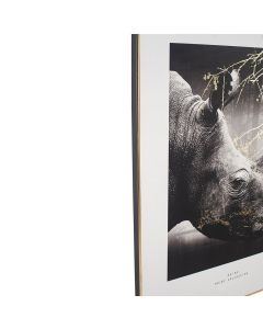 Mono Rhino Print with Gold Detail and Black Frame